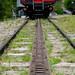 Cog Railway by Arvind Govindaraj