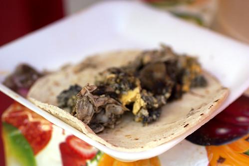 chicken taco @ benito juarez