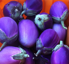 Purple Eggplant in Orange Bin by randubnick