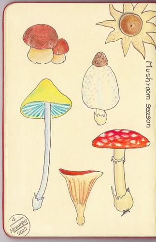 2012_11_04_mushroom_01 by blue_belta