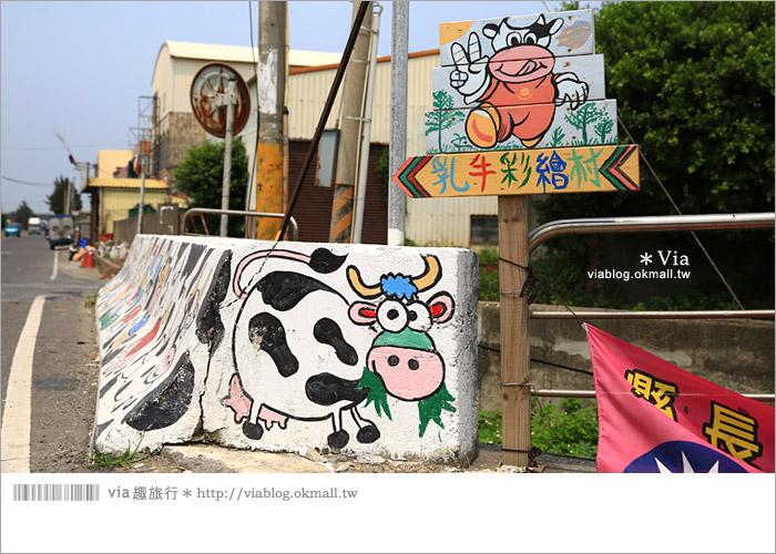 【彰化景點推薦】乳牛彩繪村(福寶村)~數百頭彩色小牛+夢幻藍晒圖的彩色村3