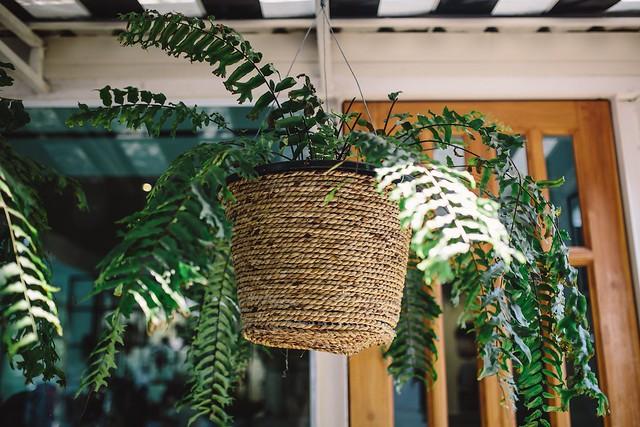 Planter DIY Idea