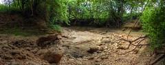 L'Issole, rivière du Var aux fluctuations saisonnières de débit assez marquées. Début juin, c'est sec !