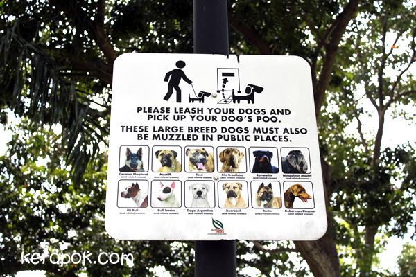 Dog Signs.....