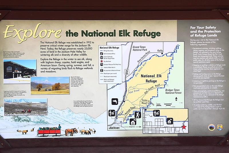 IMG_9365 National Elk Refuge