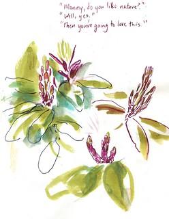 Lan Su Chinese Garden - Flowers