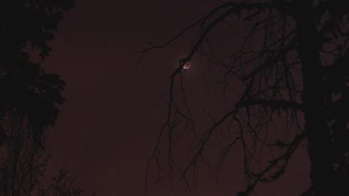 Timelapse: Lunar Eclipse