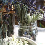 Lavender leaves and flowers