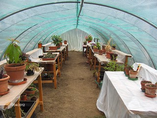 Music of the Plants experimental greenhouse