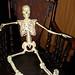 Mr. Bones Arrives in San Francisco_April 24 2012 by Maude's Vault