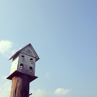 Make a little bird house in your soul.