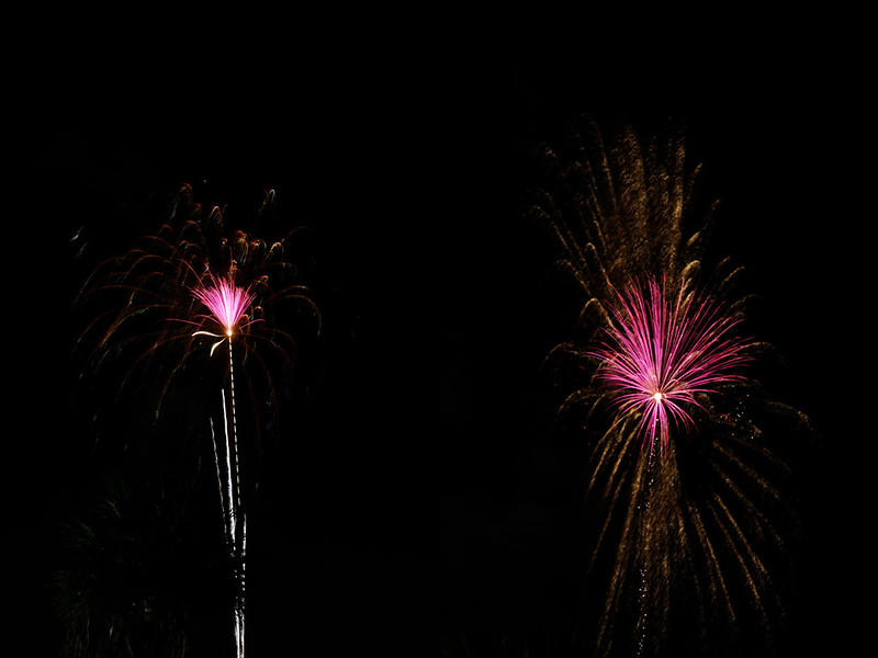 Fourth of July 12 diptych