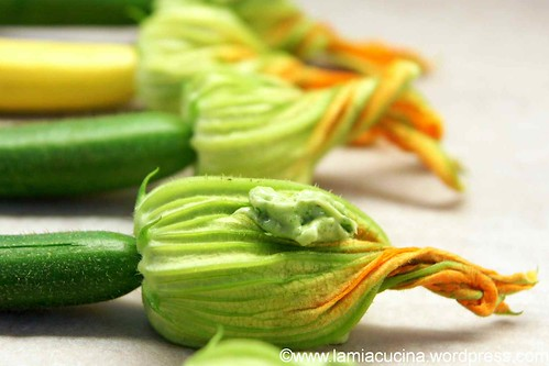 Zucchiniblüten gefüllt 1_2012 07 08_6030