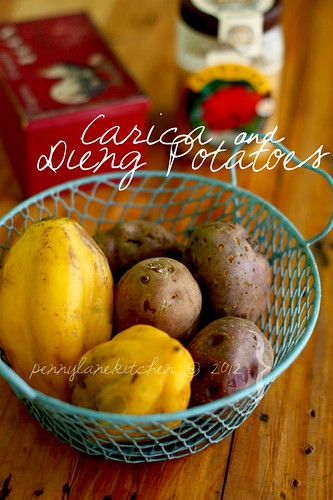 Dieng's Carica & Potatoes