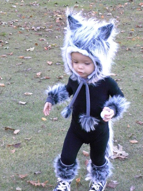 Baby Wolf Costume | Flickr - Photo Sharing!
