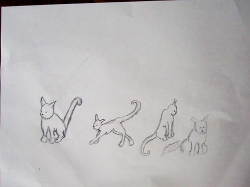 Cat study.