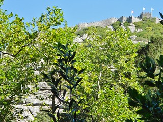 Rock Climbing is below the Moorish Castle