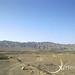 Xeric Sand Dune-2