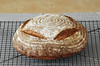 No knead spelt bread with seeds by Akane86