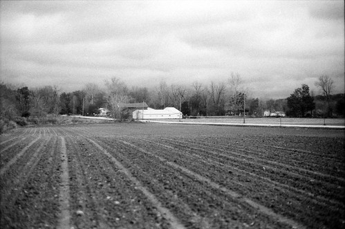 Szalay's Farm