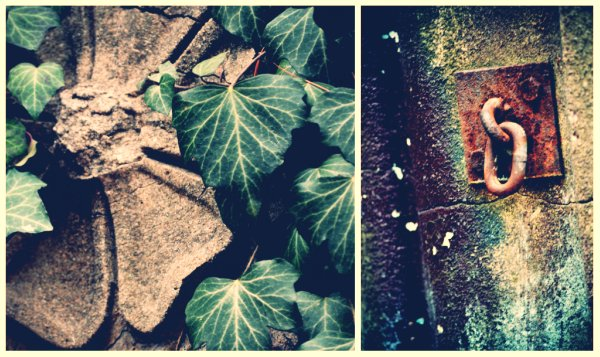 Crum Woods