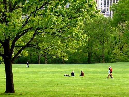 Central Park Spring 3