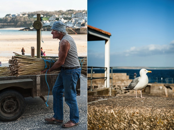 Sea Man and Segull