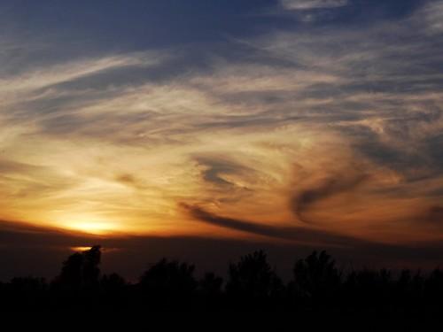 trees sunset sky sun sunlight nature sunshine clouds river landscape evening spring colours meadow poland polska natura sunlit słońce wiosna przyroda kolory rzeka wieczór chmury niebo zachódsłońca drzewa łąka krajobraz warta sonydschx100v