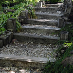 stone and wood stairway leading up to the backyard