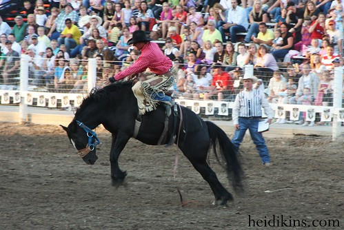 Strawberry Days Rodeo_June 2012 (24)