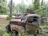 Rusty Trucks, FL