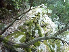 Brèche du Carciara : la descente vers le milieu de la brèche