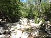 Remontée du Carciara : le champ de blocs avant la confluence Frassiccia/Velacu