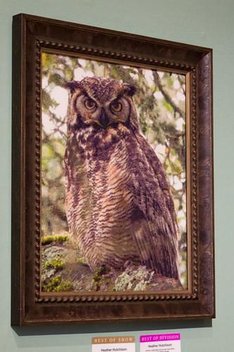 Great Horned Owl in Oak