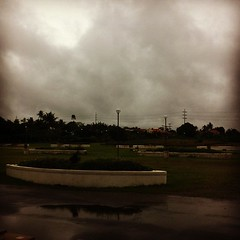 30/31: calm (before the storm) -- taken yesterday before the rains and winds got really strong. #photoadayjuly