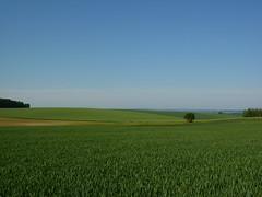 La campagne, la campagne - Photo of Barenton-sur-Serre