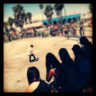 venice skateboarding