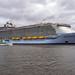 Harmony of the Seas - Nieuwe Maas - Port of Rotterdam