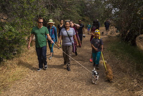 Doggie Hikes - 5/14/16