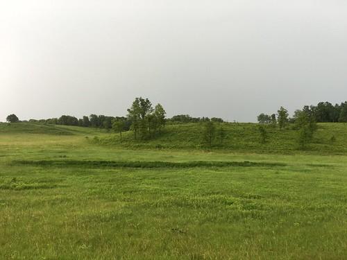 Oronoco Prairie SNA