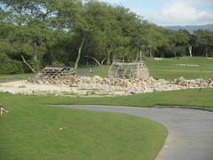 ewa beach Golf Club 018
