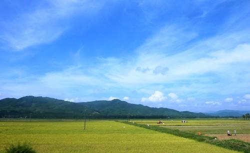 V-Route Quy Nhon-Da Nang (20)