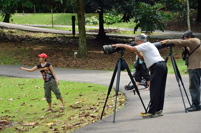 Generations of photographers