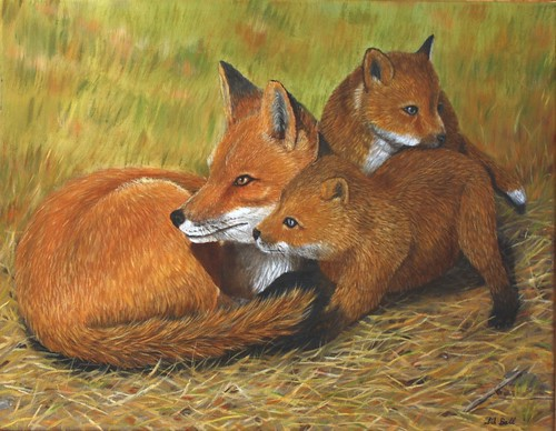 Fox Family by Sid's art