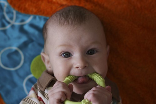 Junior and the teething ring