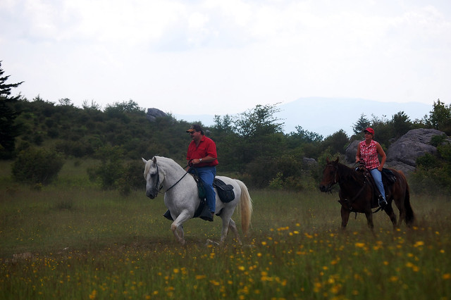 Horseback riding at Grayson Highlands State Park