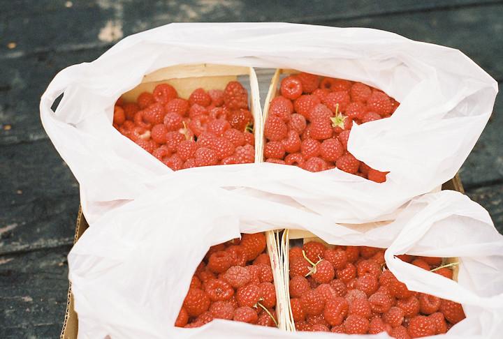 Raspberry Farm