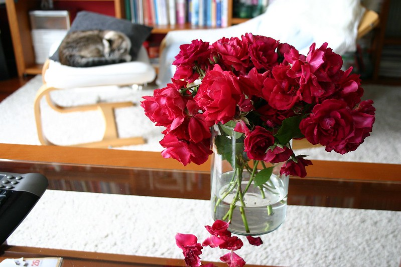 flores_3_20120620
