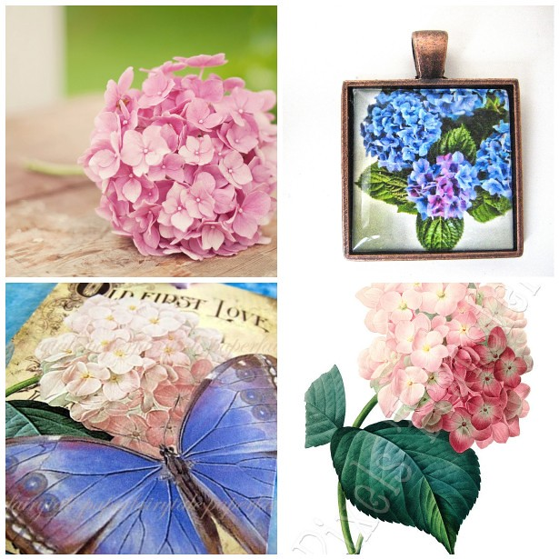 Monday Mood Board: Hortensia