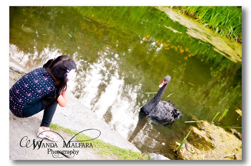 Nature Park Picnic 175